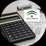 A2.1200 – Gestión Financiera